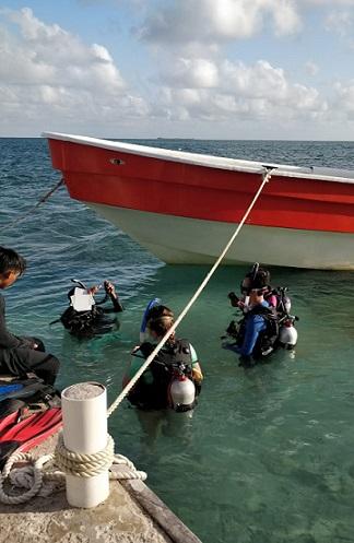 Belize 2018 volunteer trip – Day 8 - back to Tom Owen's Caye